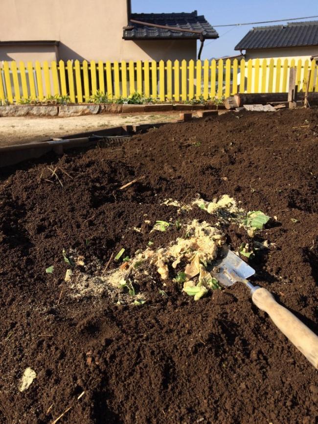 「オルタナ農園土作り