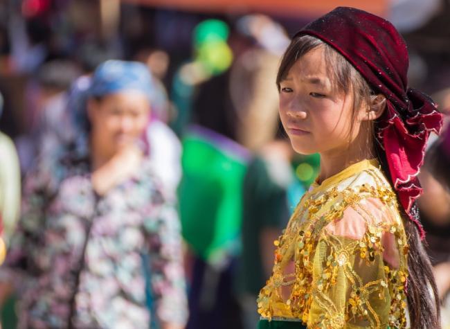 ベトナムの人口と民族